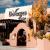 DeVargas Center